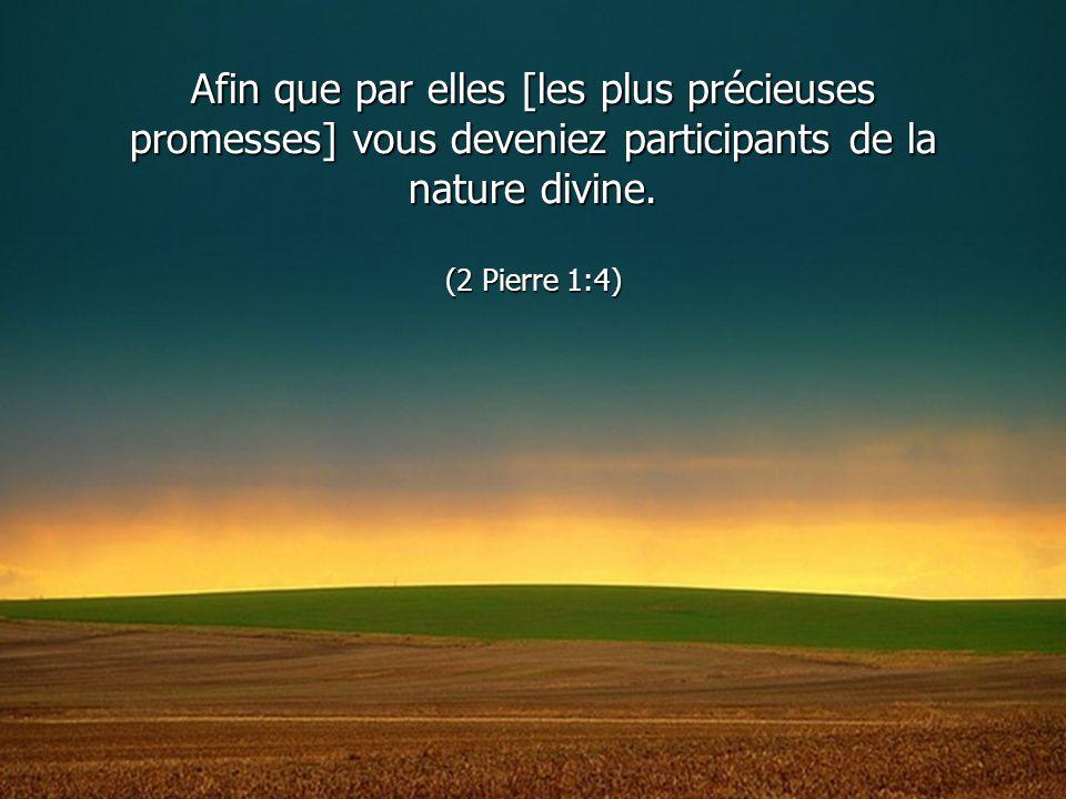 Afin que par elles [les plus précieuses promesses] vous deveniez participants de la nature divine.